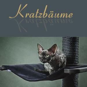 katzen kratzb ume und tiersofas made in germany diva. Black Bedroom Furniture Sets. Home Design Ideas